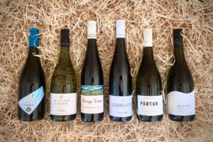 Pinot Gris mixed 6 pack